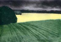 Yellow Field II