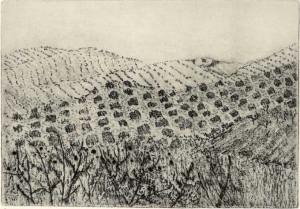 Hills at Riogordo