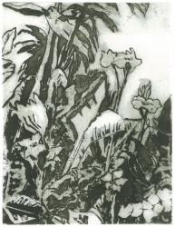 Garden in Matajana